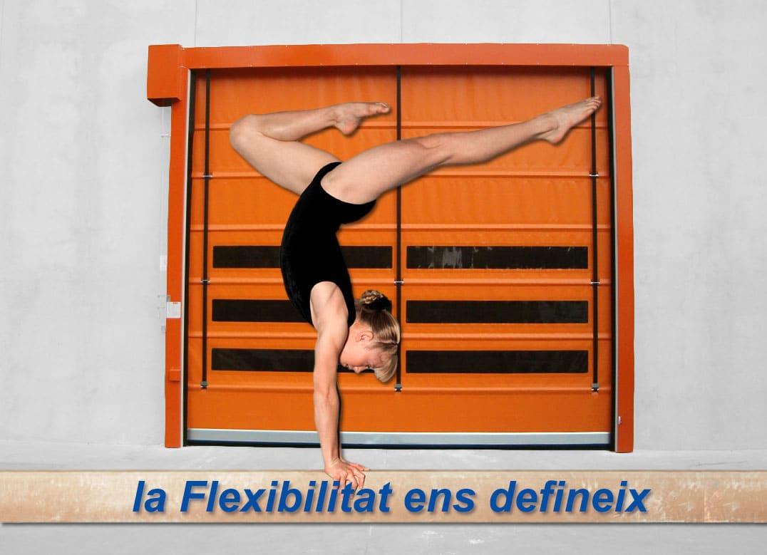Banner Flexiporta